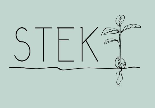 Stek Leeuwarden